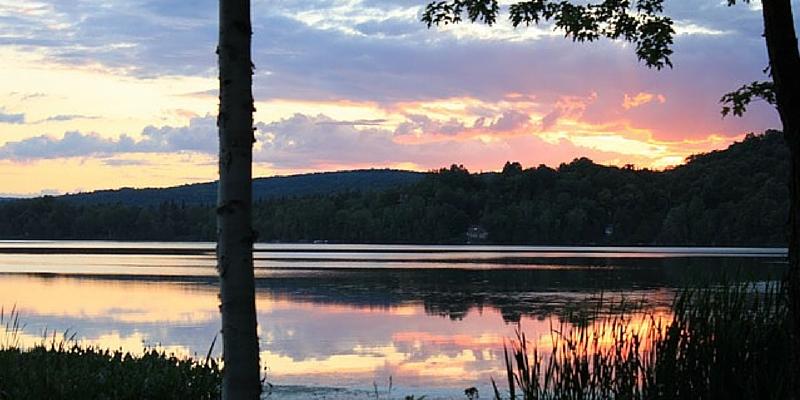 Yogi lake cabin retreat