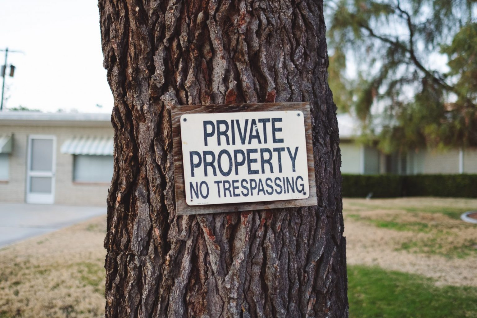 tree with sign that says private property how to prevent squatters